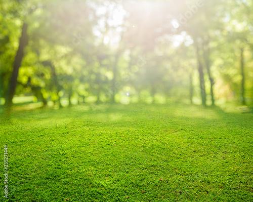 grass background © andreusK