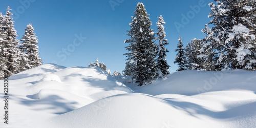 fototapeta na ścianę Winterpanorama im Zillertal Tirol