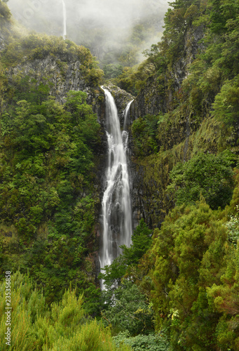Risco waterfall - madeira island - 235356858