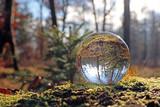 herbstwald in kristallkugel, schweiz © Schlierner