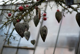 Many old weathered gray wooden hearts covered with lichen decorate an autumn tree with apples in the garden of a nursery as a symbol of love and Vallentinstag, copy space
