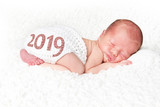 Happy New Year baby 2019 - 235501229