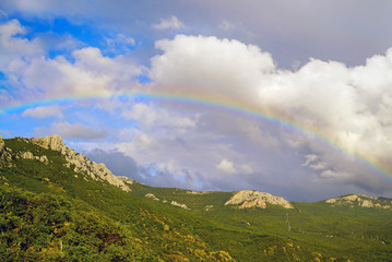 Beautiful rainbow over the forest in the mountains .