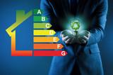 Businessman in energy efficiency concept - 235515470