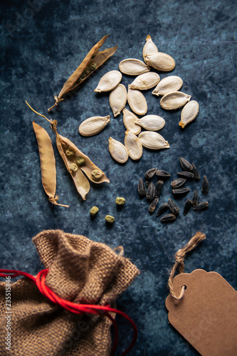 Leinwanddruck Bild Graines de légumes et plantes