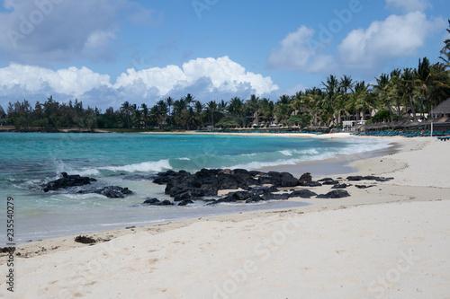 trees on white sandy beach in Caribbean sea - 235540279