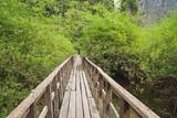 Boardwalk Over Wet Area © Tom