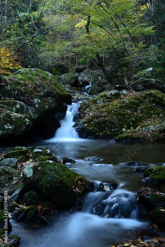 秋の渓流 - 235594884