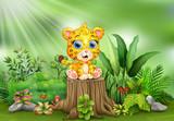 Fototapeta Child room - Cartoon a baby leopard sitting on tree stump with green plants © dreamblack46