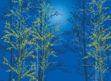 bamboo plants on blue background © Alexander Potapov
