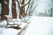 snowed city park. winter time. christmas season concept - 235702601