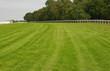 Racecourse at Epsom Downs, Surrey
