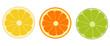 Orange, lime, lemon isolated. Vector illustration. - 235781613