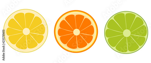 Orange, lime, lemon isolated. Vector illustration. - 235781613