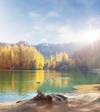 Beautiful, colorful autumn by the lake - 235785002
