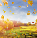 Beautiful, colorful autumn in an european country - 235785013