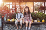 Relaxed children in an agrotourism farm - 235788229