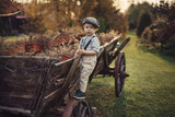 Little gentleman on a carriage - 235789223