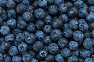 Arrangement blueberries for fruit background