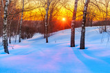 Red sunset in frozen winter forest - 235822422