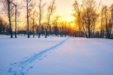 Colorful sunset in countryside at winter - 235823442