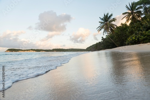 tropical peaceful beach with palm trees - 235834886
