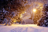 Scenic winter night nature background. Beautiful winter evening landscape with footprints on a covered by fresh snow alley and shining lanterns in a park during snowfall. Midwest USA. - 235929290