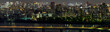 Panorama view of Tokyo city and skyline with night light