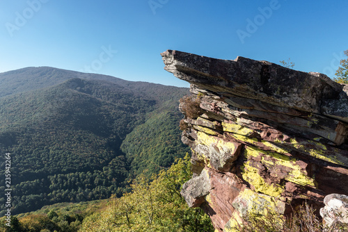 Zamariain lookout point, Navarre, Spain - 235942264