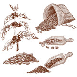 set of coffee beans with scoop and coffee branch isolated on white background - 235950271