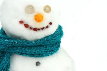 Close up Snowman Portrait