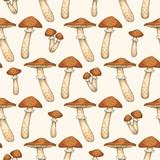 Seamless Pattern with Edible Mushroom