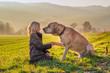 Leinwandbild Motiv Kind und Hund halten als beste Freunde die Pfote in der Hand und genießen die warme Abendsonne im Herbst