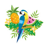 cute tropical parrot cartoon