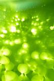green blur background - 236133674