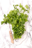 parsley and knife - 236135635
