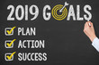 Human Hand Writing New Year 2019 Goals on Chalkboard - 236150826