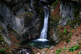 waterfall in the forest - 236160074