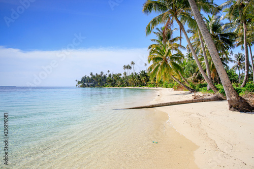 A nice and empty beach in a tropical desert island of Sumatra, Indonesia. Blue sky, white sand and coconut trees, a dream holiday place to relax, ses, a dream holiday place to relax, snorkel and rest. - 236190881