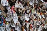 Oysters of fortune. Writen wishes on oyster shells (Ema) at Kakigara Inari a Shinto Shrine at the Hase-dera temple in Kamakura, Kanagawa Prefecture, Japan.