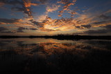 Colorful sunrise reflected in the perfectly calm water of Nine Mile Pond in Everglades National Park, Florida.