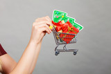 Woman hand holding cart with christmas tree - 236224273