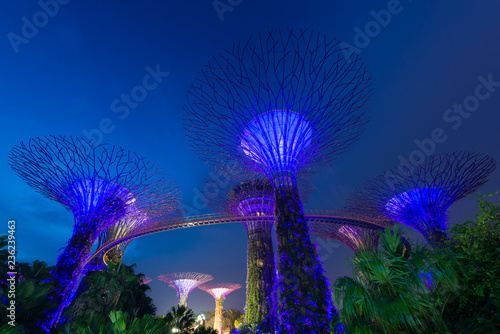 Supertree garden at night, Garden by the Bay, Singapore