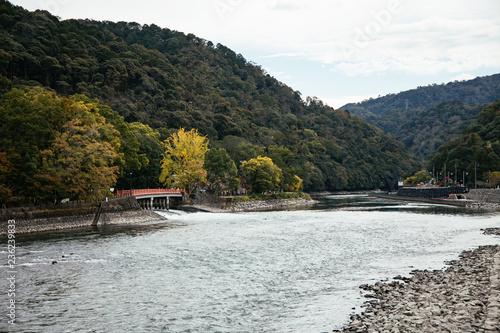 京都 宇治川 森林 橋 川 河川