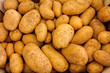 Leinwanddruck Bild - pile of fresh potatoes