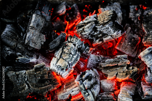 Burning coals of wood as a background - 236290482