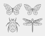 Set of abstract polygon animals. Linear geometric butterfly, dragonfly, beetle. Vector illustration. - 236291870