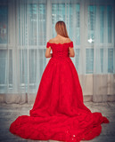 girl in a red Christmas dress by the window