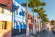 Leinwanddruck Bild - Colourful houses, palm on street Puerto de la Cruz town Tenerife Canary Islands