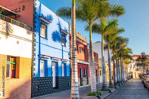 Leinwanddruck Bild Colourful houses, palm on street Puerto de la Cruz town Tenerife Canary Islands